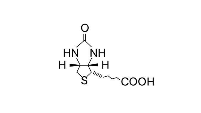 Biotion Strukturformel, haare biotin, haar biotin, biotin haarausfall, biotin haarwachstum