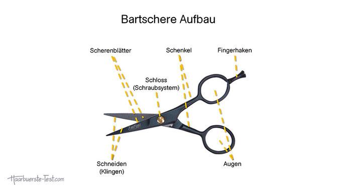 Bartschere Aufbau