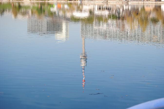 Der Donauturm spiegelt sich im Wasser der Donau