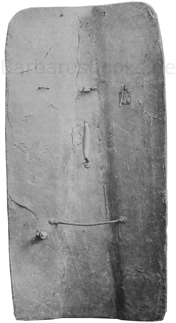 Rückansicht der Pavese