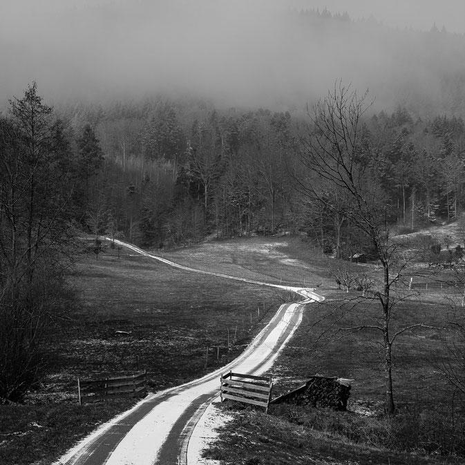 Weißer Weg, Schwarzwald, Geroldsau, Baden-Baden, Nebel, Nebelstimmung, foggy day, foggy mood, white country way, Schwarzweissfotografie, kreative Fotografie, Fototipps