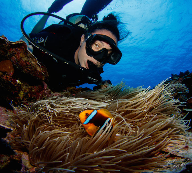 Finding Nemo in Yap, Micronesia. Photo creds: Brad Holland