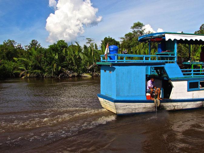 Klotok Boat Cruise