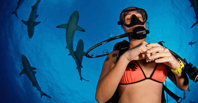 girls and sharks