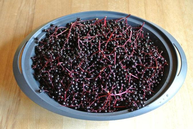 Schritt für Schritt Anleitung zum Entsaften von Früchten im Thermomix