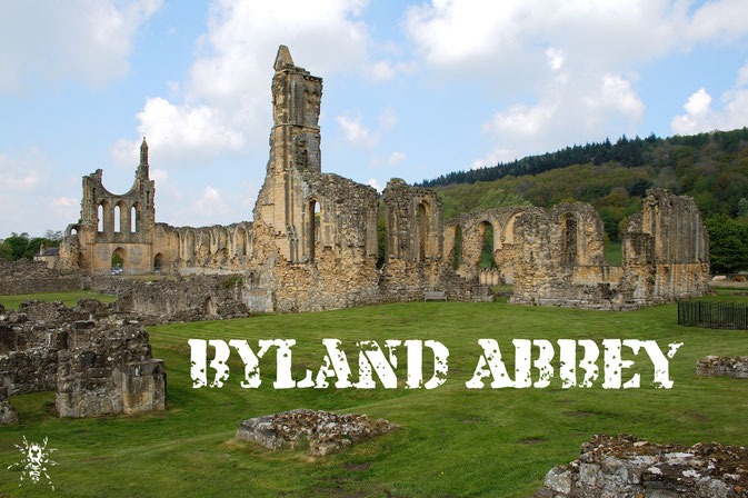 Die Ruinen der Byland Abbey (Fotobeitrag) - Zebraspider DIY Anti-Fashion Blog