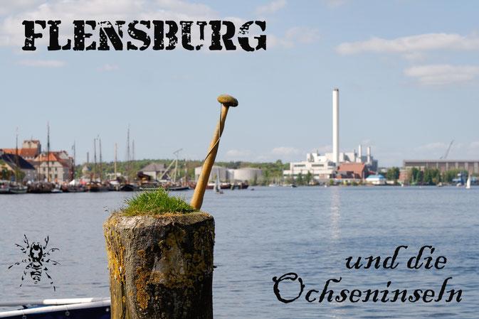 Flensburg und die Ochseninseln im Mai - Fotos - Zebraspider DIY Anti-Fashion Blog
