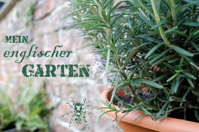 Mein englischer Garten - Urban Gardening in England - Zebraspider DIY Anti-Fashion Blog