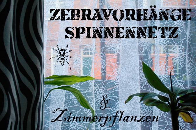 Zebravorhänge, Spinnennetz und Zimmerpflanzen - Zebraspider DIY Anti-Fashion Blog