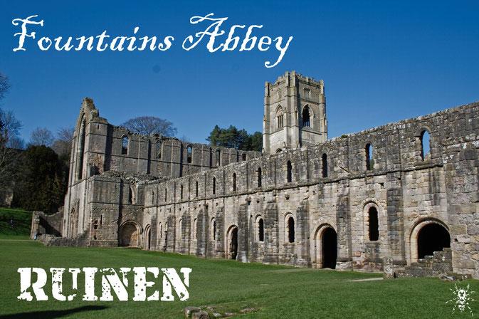 Die Ruinen der Fountains Abbey (Fotobeitrag) - Zebraspider DIY Anti-Fashion Blog