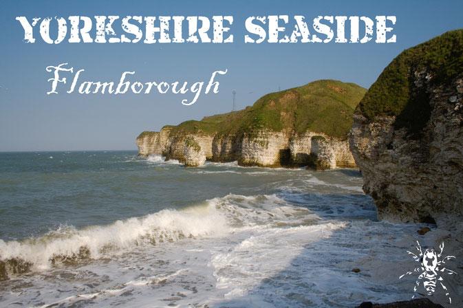 Photos from the Yorkshire seaside - Flamborough Head - Zebraspider DIY Blog
