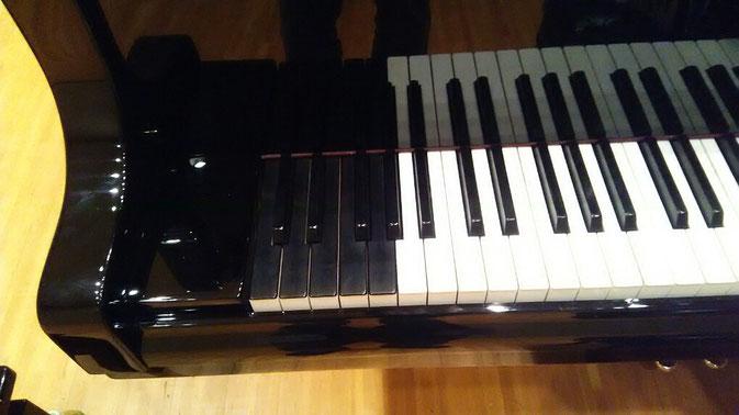 低音の鍵盤9つは黒塗りです。「弾いていて違和感はあまりない」とのことでした