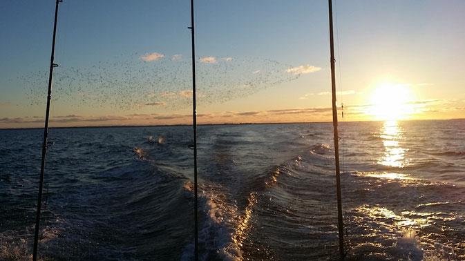 Flucht auf die Ostsee