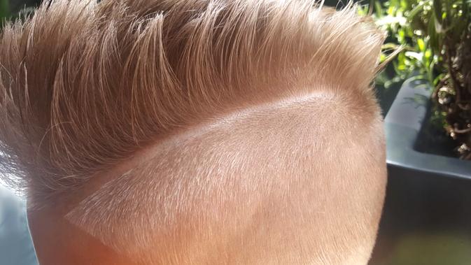 haarschneider konturen, konturen haarschneider