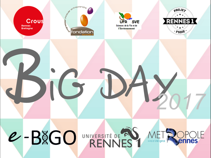 Image de présentation du BIG Day 2017.