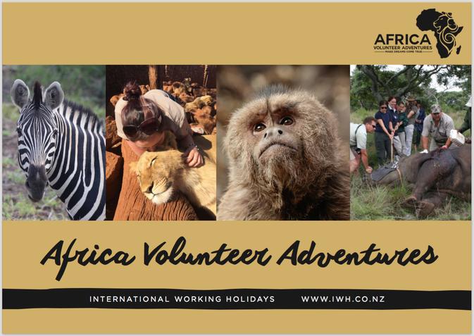 Download Africa Volunteer Adventures Brochure