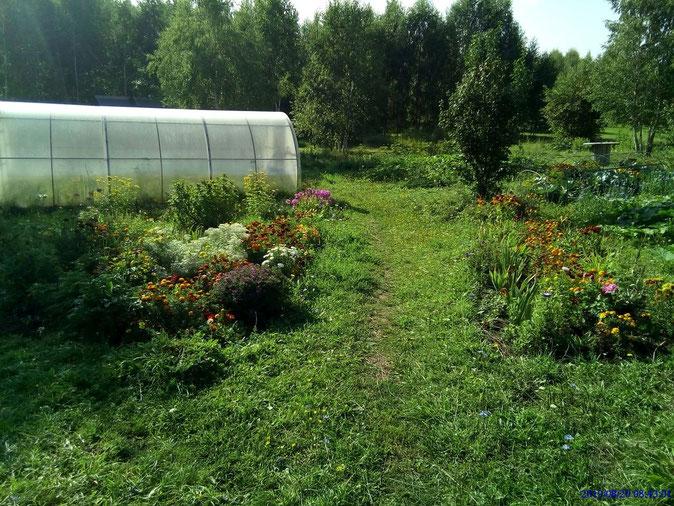往菜園的小徑