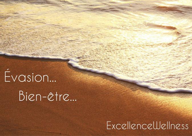 ExcellenceWellness Spa et Massage Biarritz Bien-être, Soins corps et soins visage, cosmétiques biologiques green et végan sur Biarritz, Anglet, Bayonne, Hendaye.