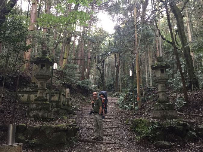 Kyoto - 7 Day Itinerary For Active Families with Small Kids - Hiking Daigoji