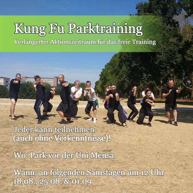 Kung Fu Parktrainings in Köln (Sommeraktion der Jing Wu Schue Köln)