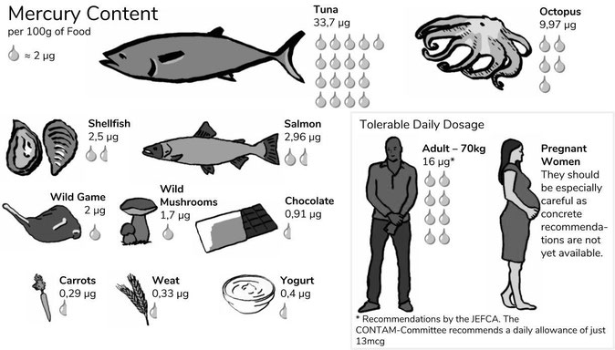 How much mercury does food contain? Examples: Tuna, Octopus, Shellfish, Salmon, Wild Game, Wild Mushrooms, Chocolate, Carrots, Weat, Yogurt