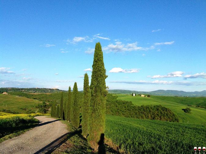 Radda nel bicchiere. Itinerari di VINO. Blog Etesiaca Radda in Chianti