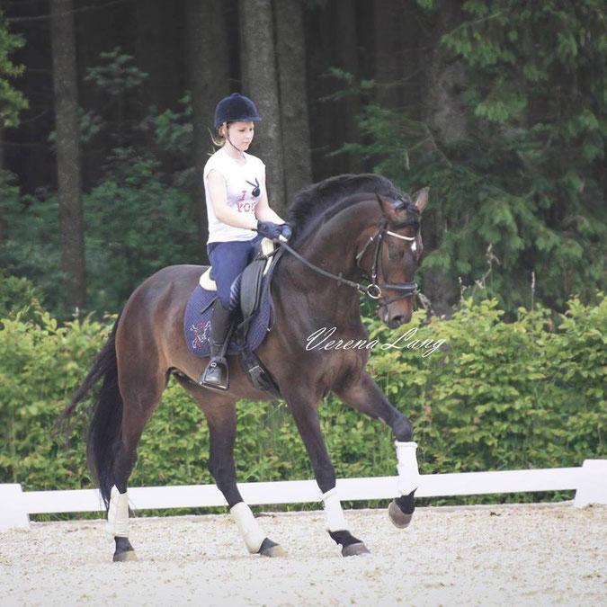 Magdalena Büchele auf ihrem Pferd Liam
