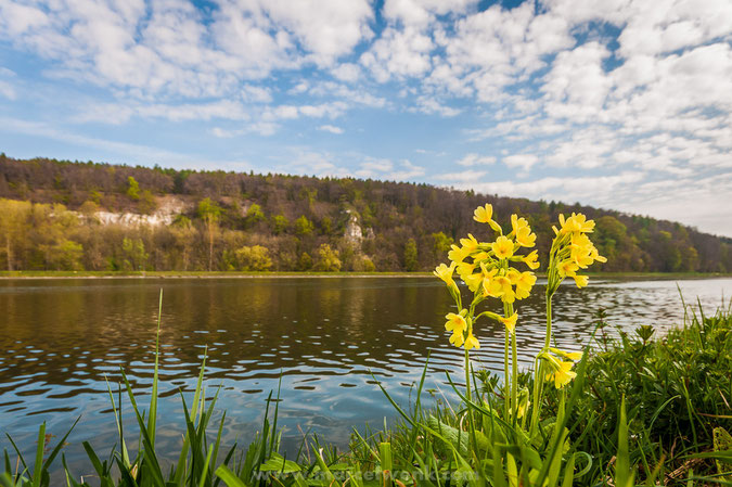 Blick vom Ufer der Donau auf den Finkenstein