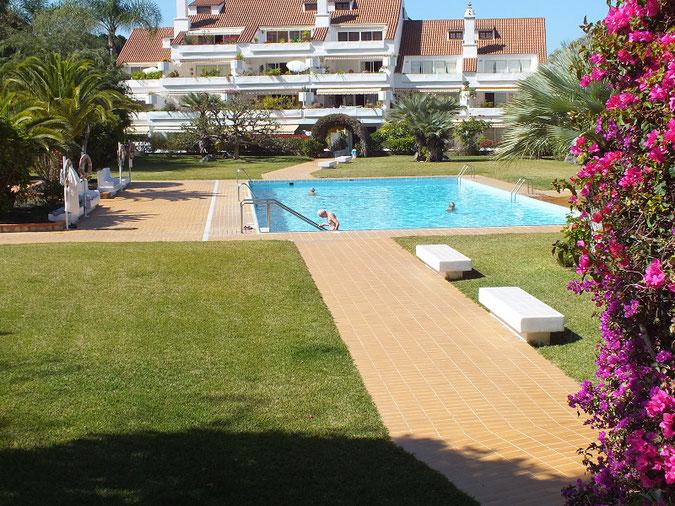 Typischer 4 eckiger Pool mit viel Rasenfläche und einer Einfassung aus verschiedenen tropischen Pflanzen.