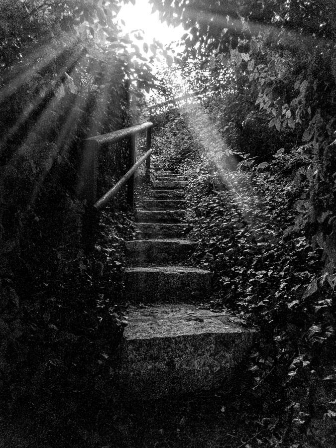 Geheime Treppe in Röbel / Müritz