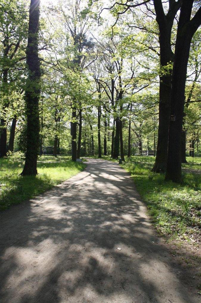 Neuer Garten und Schloss Cecilienhof englischer Gartenkunst Ausflug Spaziergang Sommer