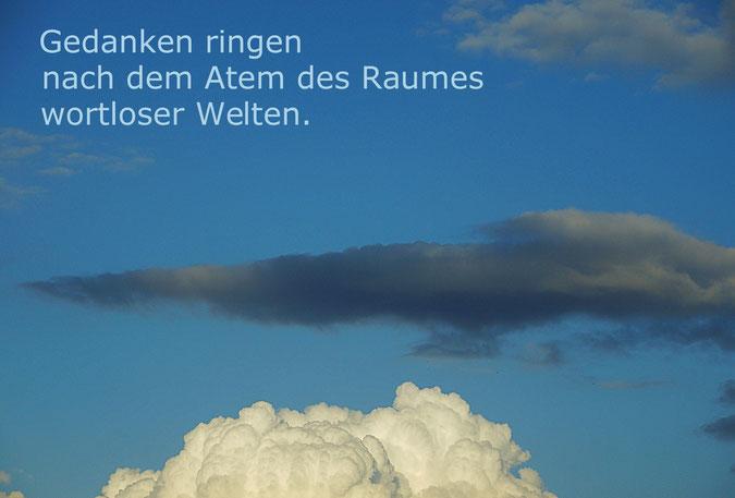 Haiku - Doreen Rhea