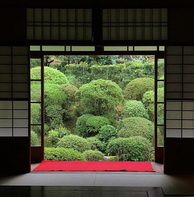 京都市下京区四条烏丸の心療内科、女医のいるメンタルクリニック、寺院の日本庭園