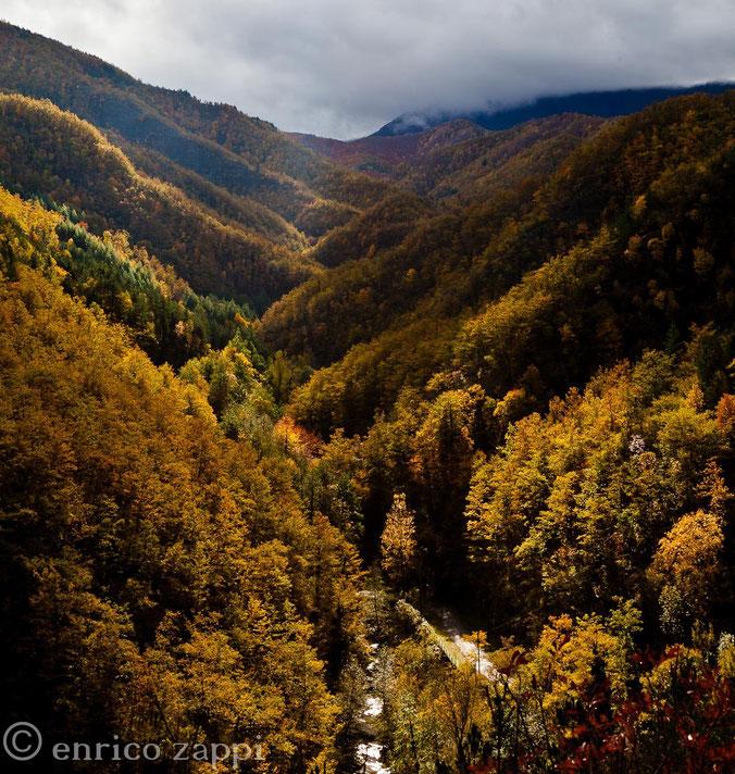Colori e atmosfera autunnale sbalorditivi ai piedi del Parco Nazionale delle Foreste Casentinesi