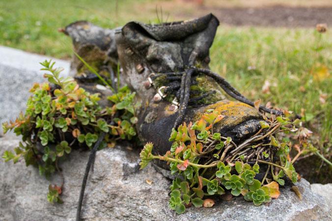 Marion A. - Foto 7 - Der Natur überlassen