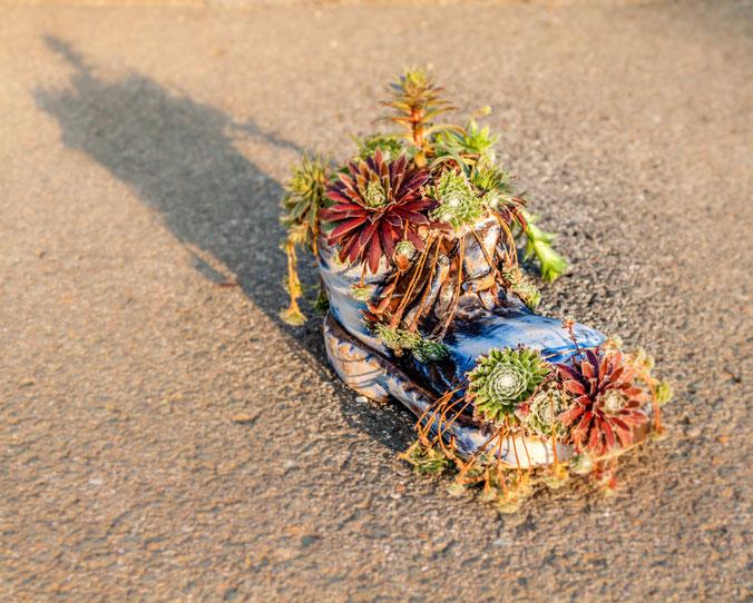 Gabi - Foto 4 - wachsender Schuh