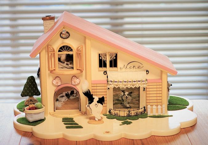 「元気に芝生の中を走り回っている姿が想像できるお家」のご依頼で制作したお家