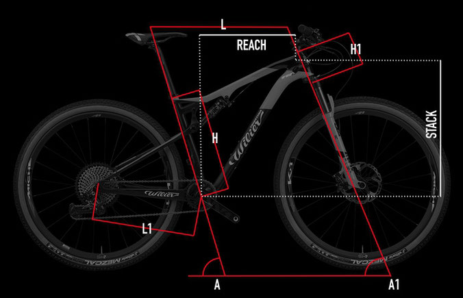 Wilier 110FX Geometrie Italian Cycle Experience
