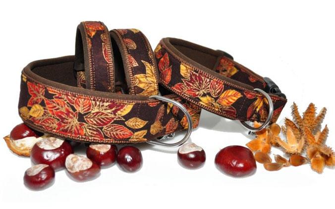 herbstliches Halsband besonders stabil auch als Zugstopp oder Schlupfhalsband