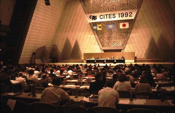 8. CITES Vertragsstaatenkonferenz (CoP8), 1992  in Kyoto (Japan)