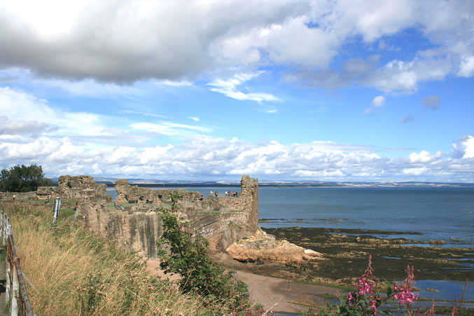 St. Andrews Scotland ofpenguins&elephants of penguins & elephants St. Andrews Cathedral view sea