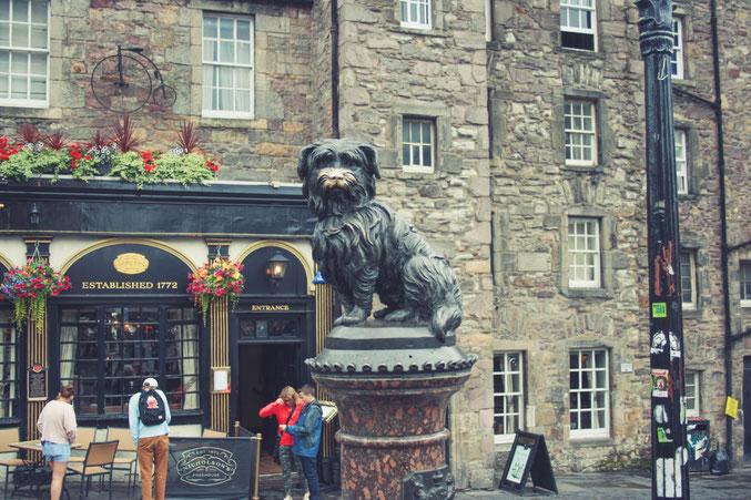 Edinburgh Scotland ofpenguinsandelephants of penguins and elephants Bobby statue