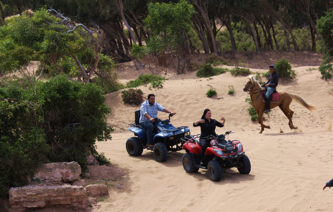 Wer vier Räder bevorzugt, kann auch per Quad die Dünen- und Flusslandschaft erkunden.