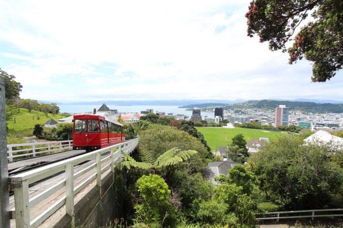 Die 5 Top Tipps für Neuseelands Nordinsel. TOP 5: Wellington