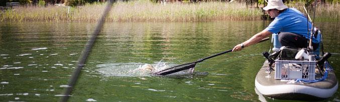 SUPfishing, SUP fischen, Angeln vom SUP, Österreich,
