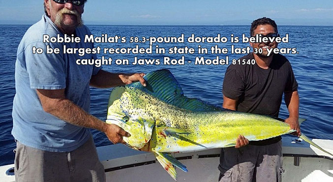 The Largest Dorado is caught by Jaws Rod Blank Model 81540!