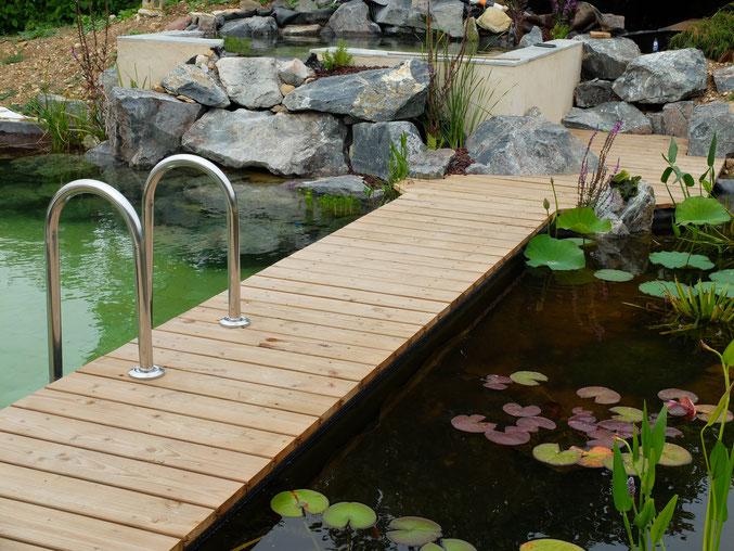 Jardin Aquatique - Baignade Naturelle - Plongée Végétale Paysagiste