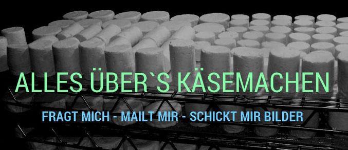 Käseherstellung; selber Käse machen