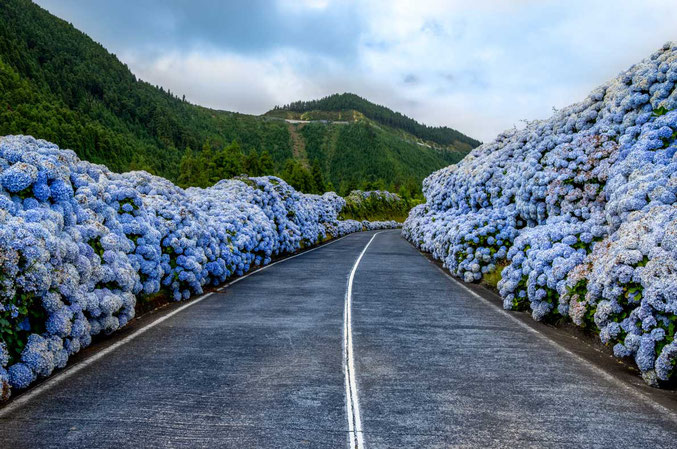 azores-best-road-cycling-destinations-europe
