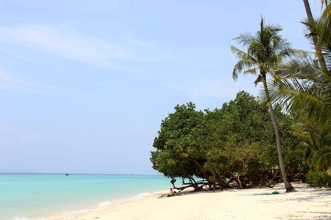 Buchen Sie einen exklusiven Südthailand Urlaub und reisen Sie auf die Insel Phi Phi Islands.